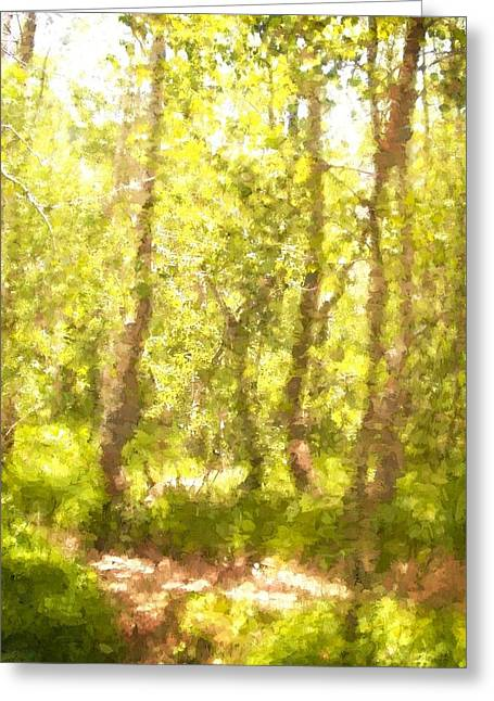 Path 5 Greeting Card by Pamela Cooper