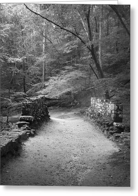 Path In Black And White Greeting Card by Kelly Hazel