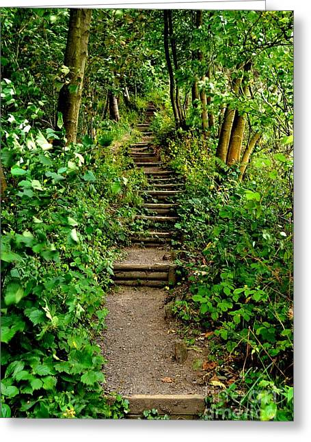 Path Into The Forest Greeting Card by Scott Lyons