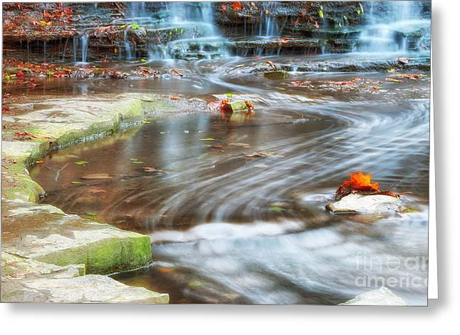 Path Of Water Greeting Card by Charline Xia