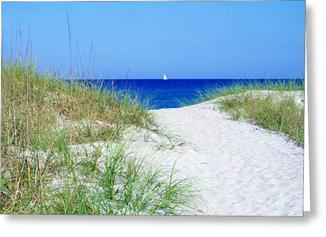 Path To Beach, Venice, Florida, Usa Greeting Card by Panoramic Images