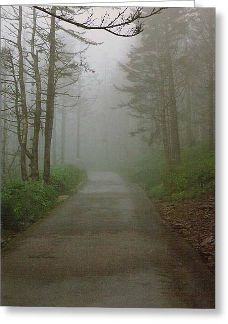 Path To Clingmans Dome Greeting Card