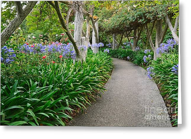 Path To Eden - Beautiful Walkway Towards A Lush Garden With Blooming Flowers. Greeting Card