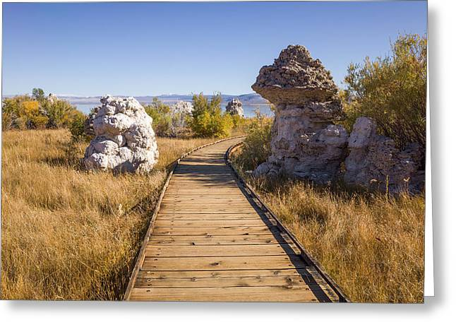 Path To Mono Lake Greeting Card