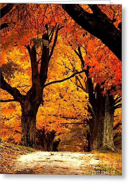 Path To Serenity Greeting Card by Jim  Calarese