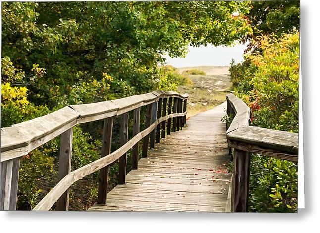 Path To The Beach Greeting Card by Nancy De Flon