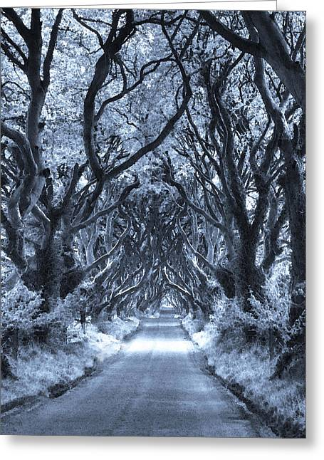 Path To The Soul Greeting Card by Vicki Lea Eggen