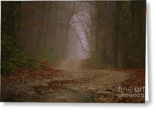 Path To Wolf Den  Greeting Card