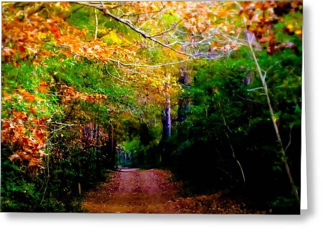 Paths We Choose Greeting Card by Karen Wiles