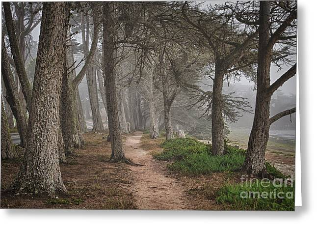 Pathway Greeting Card by Alice Cahill