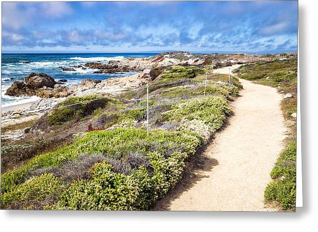Pathway At Asilomar State Beach Greeting Card
