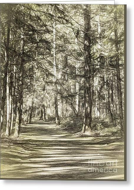 Pathway Greeting Card by Jean OKeeffe Macro Abundance Art