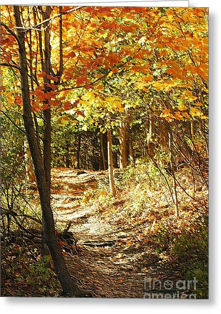 Pathway Through The Woods Greeting Card by Kathleen Struckle