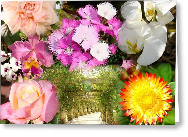 Pathway To Paradise Greeting Card by Van Ness