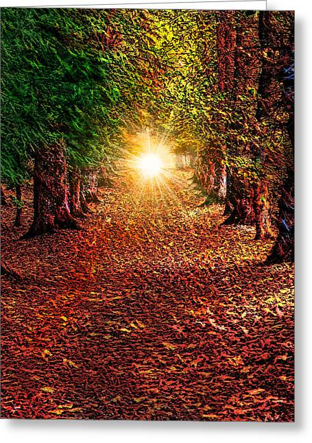 Pathway To The Heart Greeting Card by Michael Durst