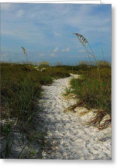 Pathway To The Sea Greeting Card by Mel Steinhauer