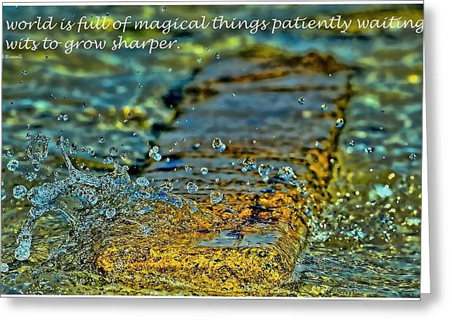Patiently Waiting Greeting Card by Pamela Blizzard