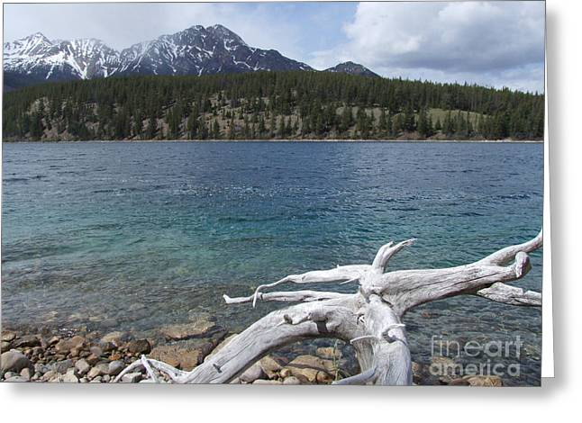 Greeting Card featuring the photograph Patricia Lake - Jasper by Phil Banks