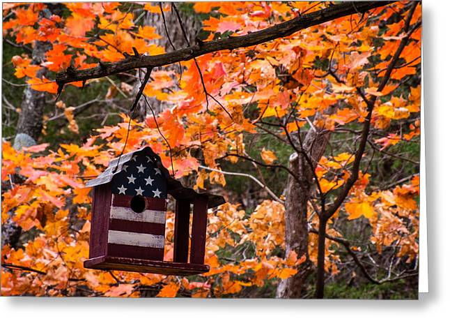 Greeting Card featuring the photograph Patriotic Birdhouse - 01 by Wayne Meyer
