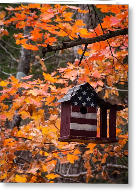 Greeting Card featuring the photograph Patriotic Birdhouse - 02 by Wayne Meyer
