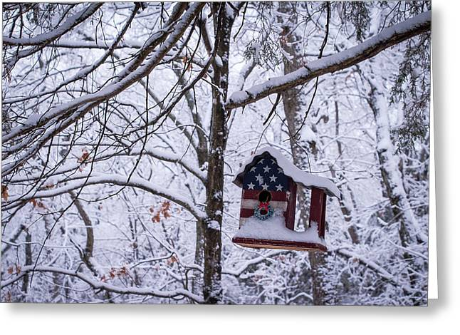Greeting Card featuring the photograph Patriotic Christmas by Wayne Meyer
