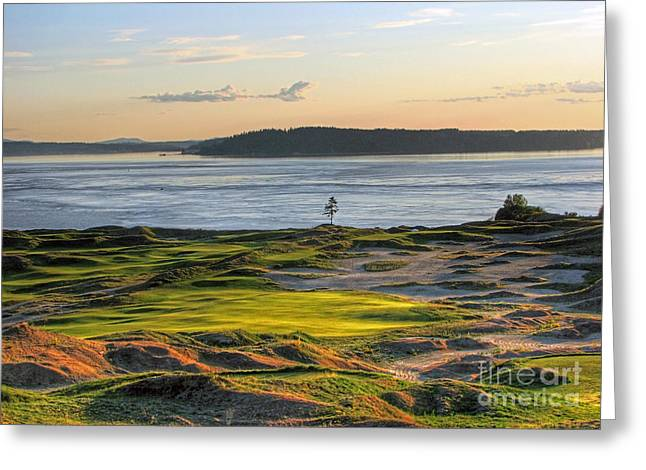 Greeting Card featuring the photograph Pax - Chambers Bay Golf Course by Chris Anderson