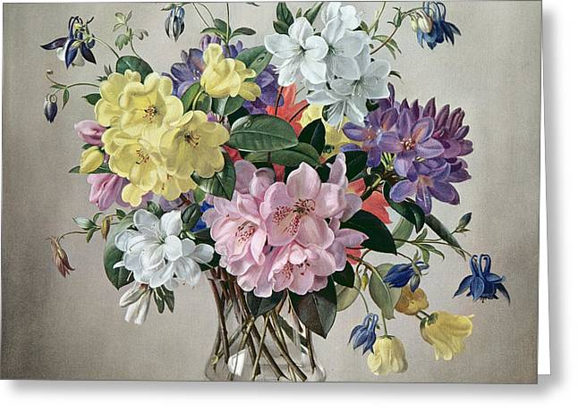 Rhododendrons, Azaleas And Columbine In A Glass Vase Greeting Card by Albert Williams