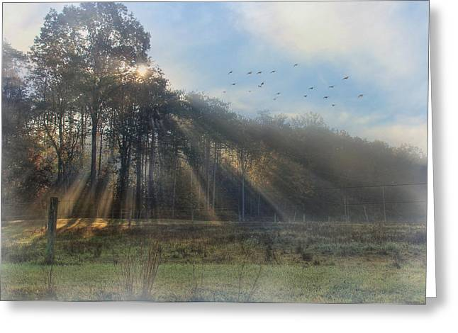 Peace In The Valley Greeting Card by Lori Deiter