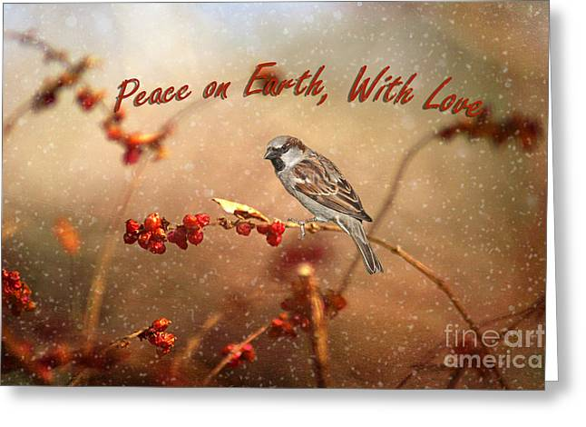 Peace On Earth Greeting Card by Darren Fisher