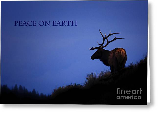Peace On Earth Greeting Card by Sharon Ely