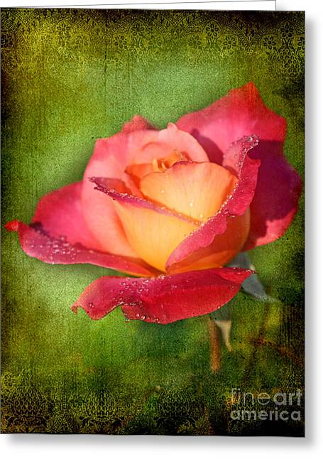 Peace Rose Greeting Card by Joan McCool
