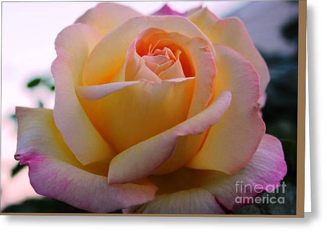 Peaceful Aura Greeting Card