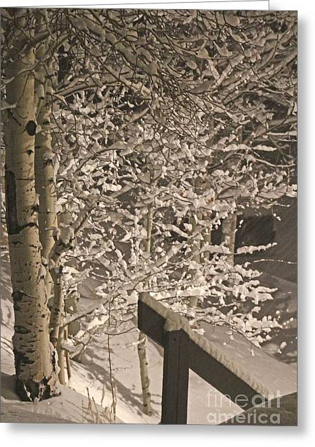 Peaceful Blizzard Greeting Card by Fiona Kennard