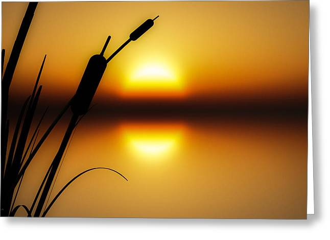 Peaceful Dawn Greeting Card by Bob Orsillo