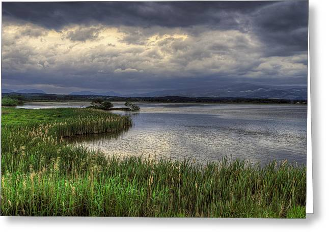 Peaceful Evening At The Lake Greeting Card
