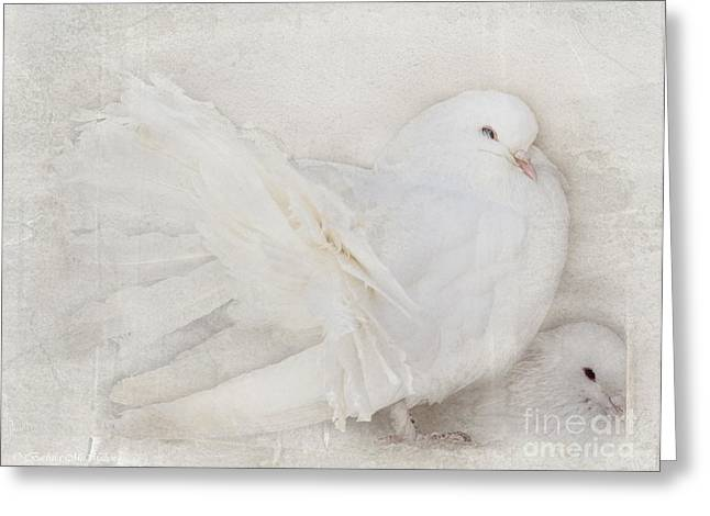 Peaceful Existence White On White Greeting Card by Barbara McMahon