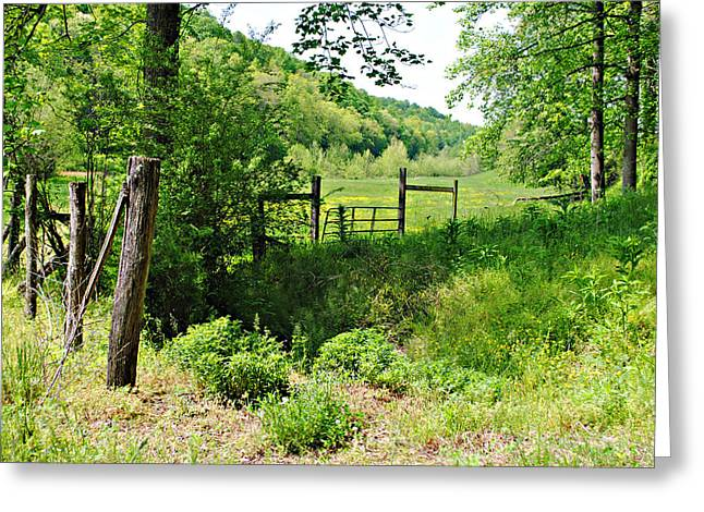 Peaceful Field Greeting Card by Stephanie Grooms