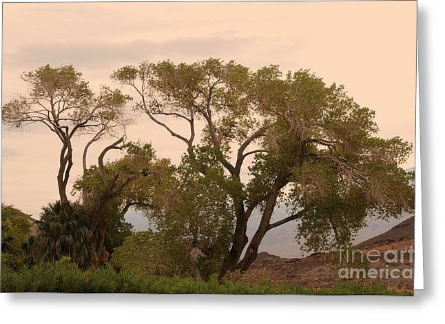 Peaceful Greeting Card by Kathleen Struckle