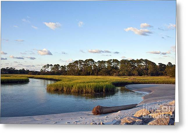 Greeting Card featuring the photograph Peaceful Marsh by Paula Porterfield-Izzo