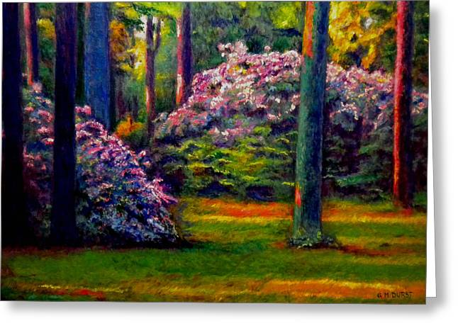 Peaceful Morning Greeting Card by Michael Durst