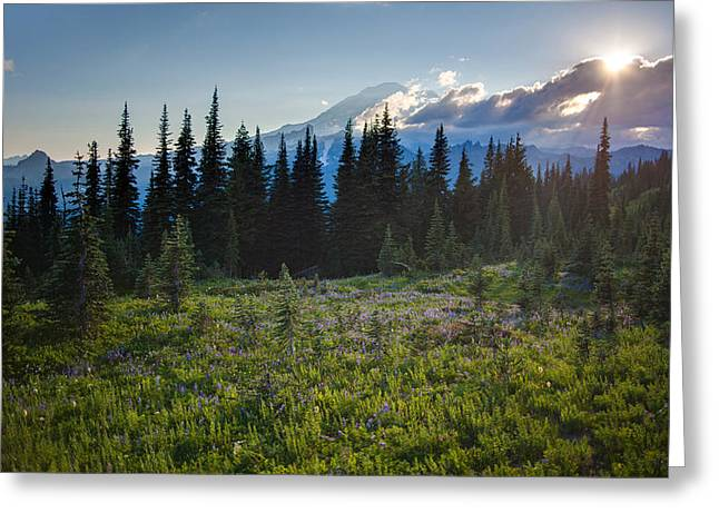 Peaceful Mountain Flowers Greeting Card by Mike Reid