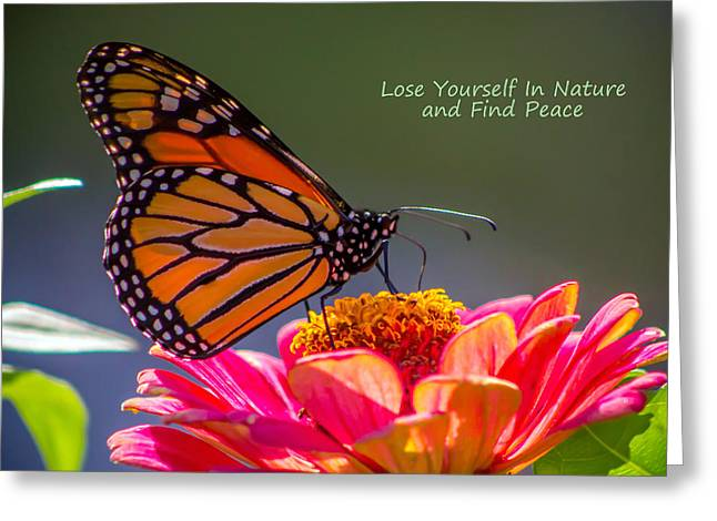 Greeting Card featuring the photograph Peaceful Nature by Marion Johnson