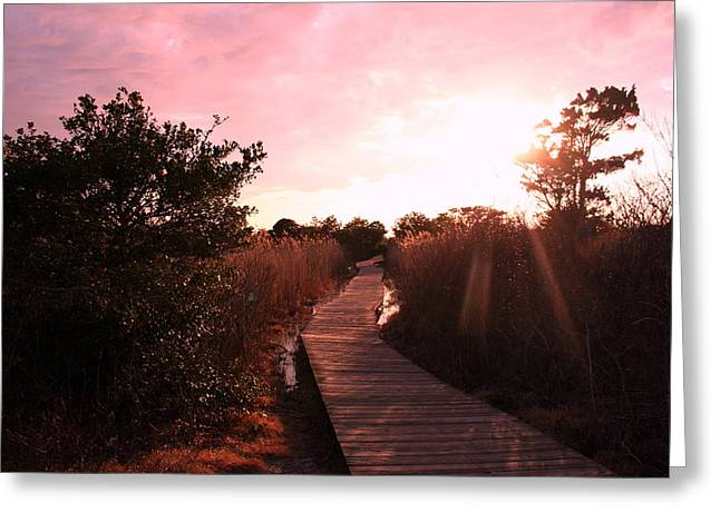 Greeting Card featuring the photograph Peaceful Path by Karen Silvestri