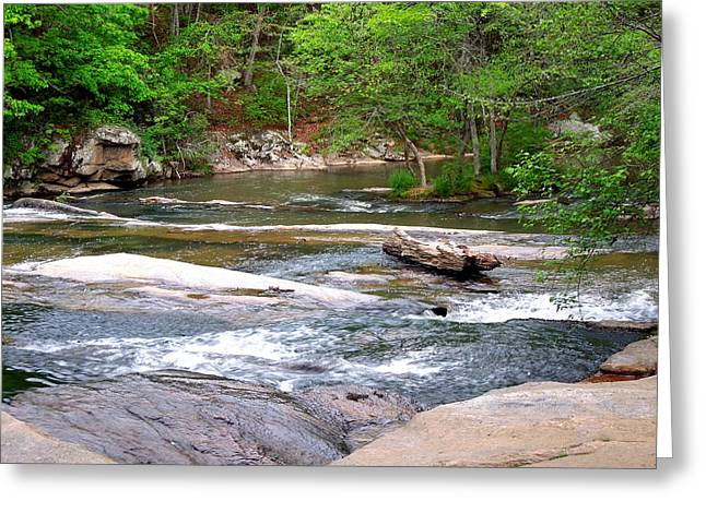 Peaceful Greeting Card by Pete Trenholm