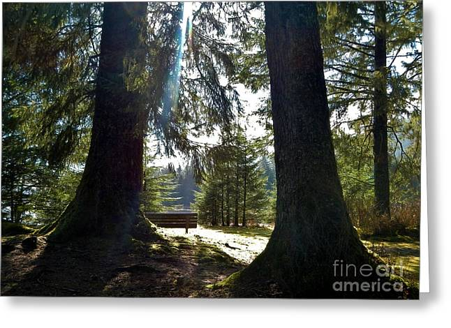 Greeting Card featuring the photograph Peaceful Setting  by Laura  Wong-Rose