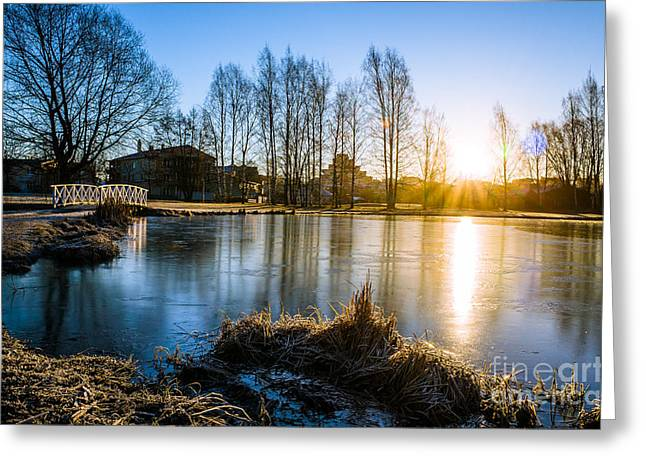 Peaceful Spring Morning At The Icy Pond Greeting Card by Ismo Raisanen