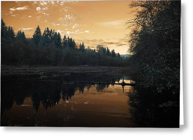 Greeting Card featuring the photograph Peaceful Sunset by Rebecca Parker