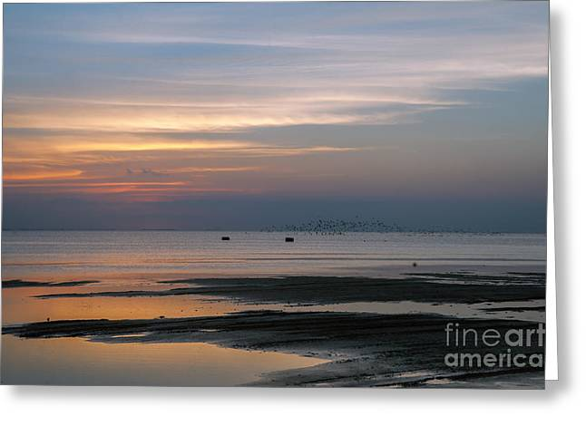 Peaceful Sunset Greeting Card by Tammy Smith