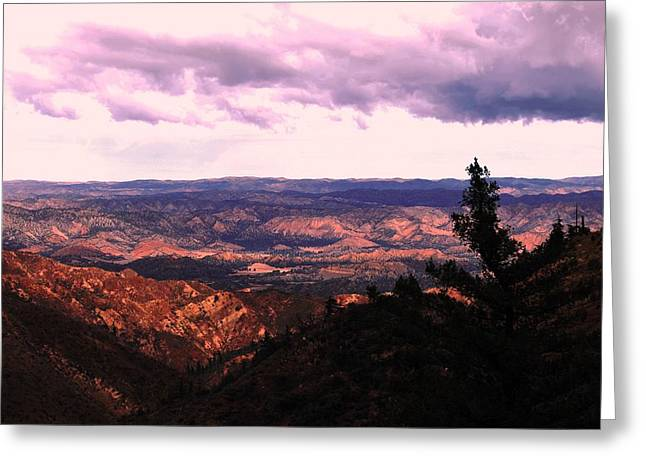 Greeting Card featuring the photograph Peaceful Valley by Matt Harang