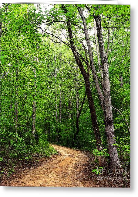 Peaceful Walk Greeting Card by Lydia Holly